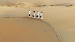 belle-photo-de-dune-a-muine