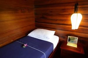cabine-bassac-mekong-vietnam
