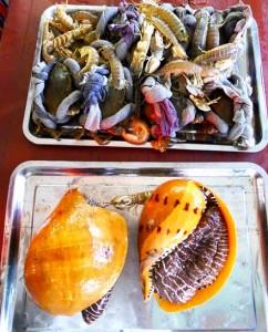 fruit-de-mer-a-catba