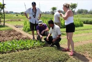 jardin-des-vegetaux-a-traque-hue