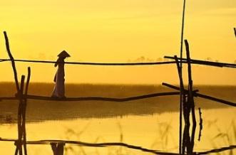 pont-de-singe-au-vietnam