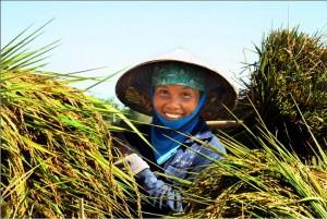 sourire-de-paysan-vietnamien