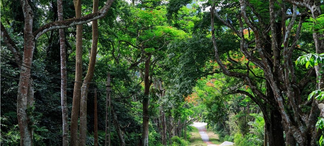 trek-a-cuc-phuong