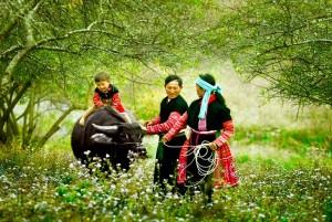 belle-photo-famille-ethnique-nord-vietnam