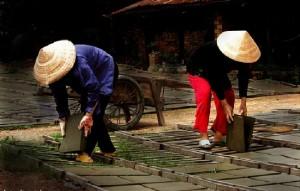 chapeau-conique-image-vietnam