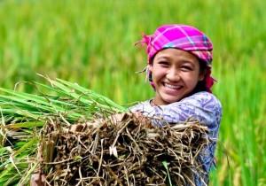 ethnie-zay-vietnam-nord