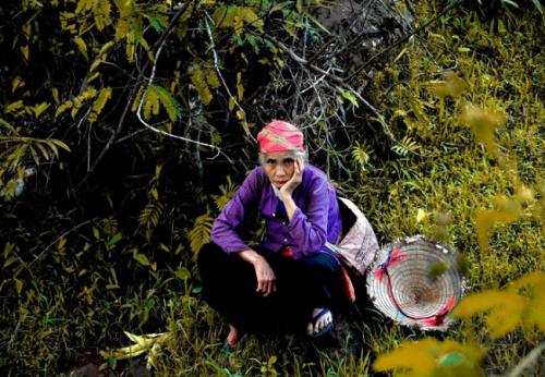 femme-thais-blancs-nord-vietnam