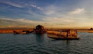 la-lagune-pha-tam-giang-vietnam
