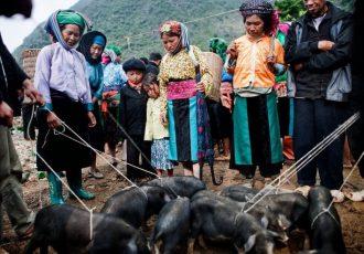 voyage-hagiang-vietnam
