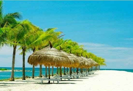 Photos de mui ne belle plage tropicale du sud vietnam - Piscine tropicale france ...