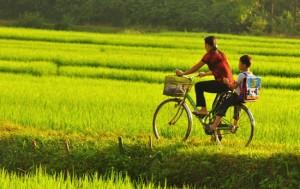 velo-au-vietnam