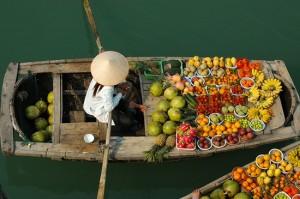 le fleuve du mekong