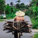 photos-de-ben-tre-transport