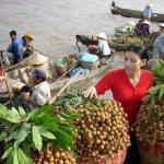 photos-de-marchands-flottants-a-can-tho-vietnam