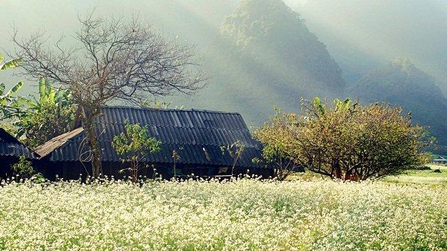 tres-belle-photos-de-son-la-province