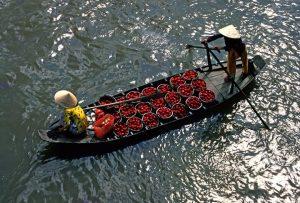 circuit-vietnam-2-semaines-photo-voyage-18
