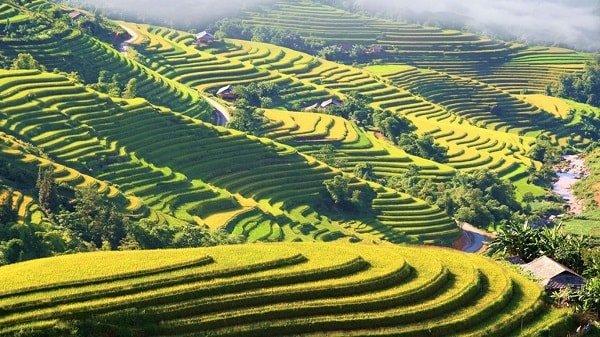 hoang-su-phi-voyage-vietnam