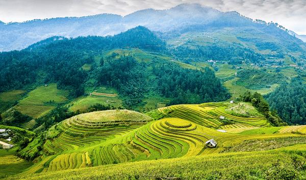 le-riziere-en-terrasse-de-mu-cang-chai