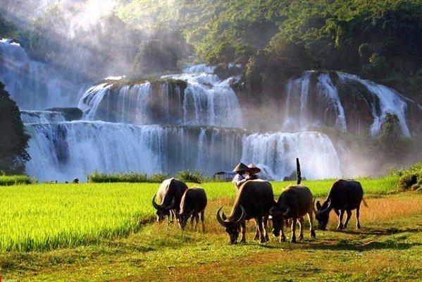 belle-photo-de-cascade-de-ban-gioc-vietnam