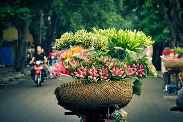 circuit-arome-du-printemps-au-vietnam-en-14-jours-et-13-nuits