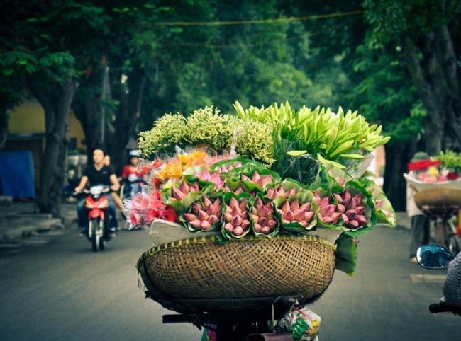 circuit arome du printemps au vietnam en 14 jours et 13 nuits