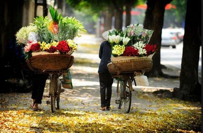 circuit arome du printemps au vietnam
