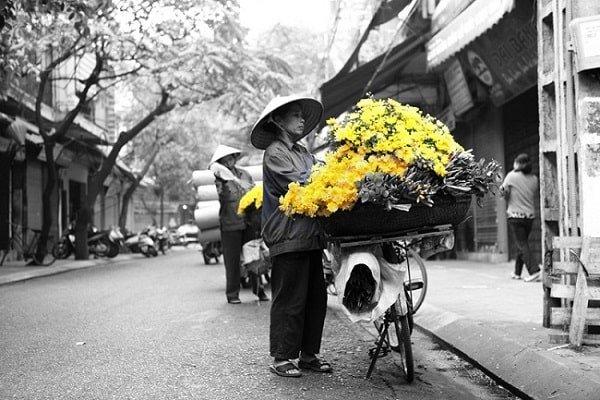 circuit au coeur du vietnam en 12 jours (11)