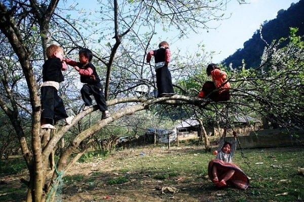 des-enfants-du-nord-ouest-vietnam2