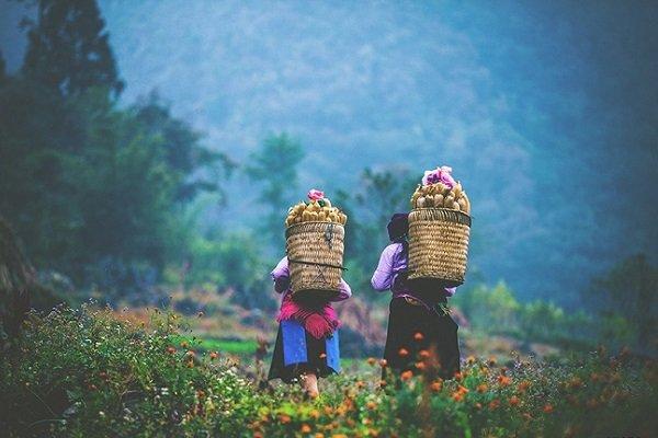 femmes-ethniques-a-ha-giang