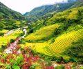 la province de Dien Bien Phu photo