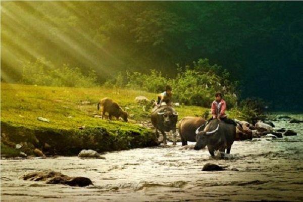 randonee-a-maichau-nord-vietnam-photo-500x333
