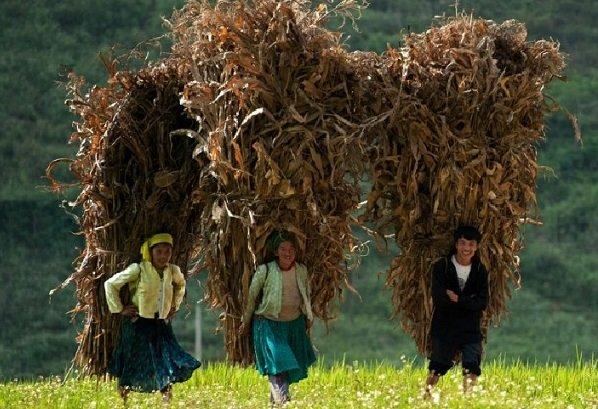 rencontre-des-vietnamiens