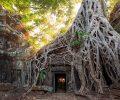 voyage au cambodge belle photo