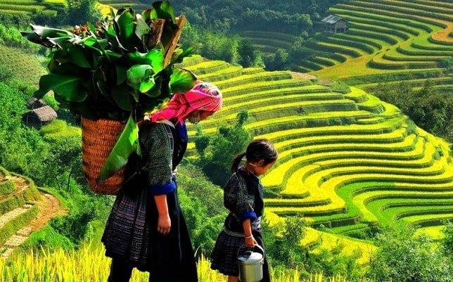 voyage de noce au vietnam - circuit saveurs du vietnam