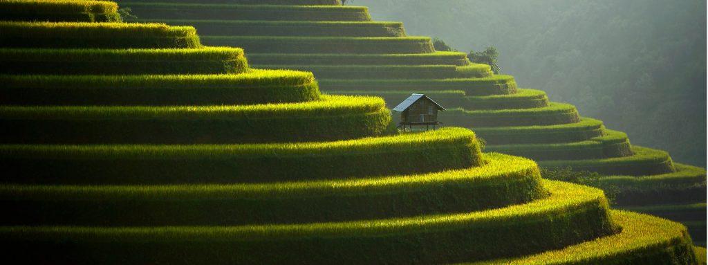 horizon vietnam travel