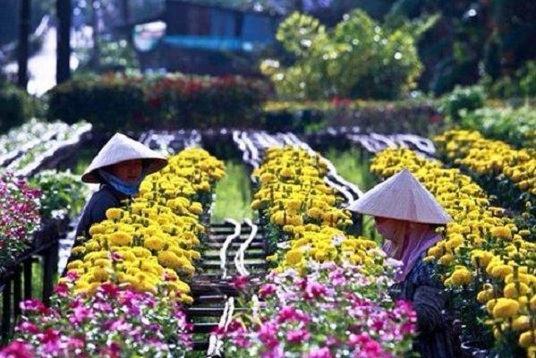 les-femmes-de-sa-dec-sud-vietnam