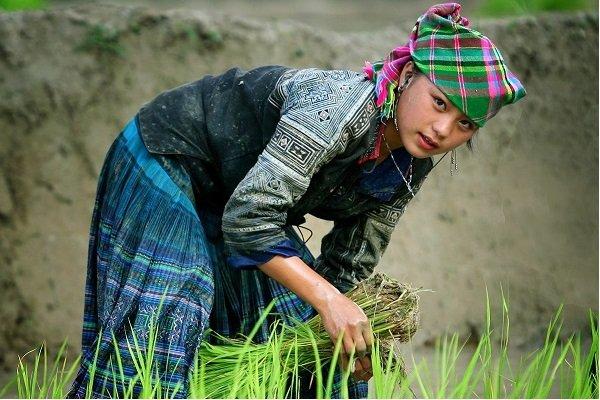 voyage vietnam photo une jeune fille