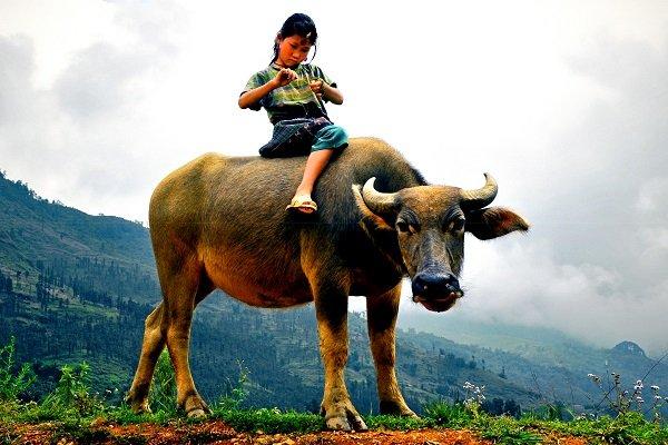 nord vietnam 4