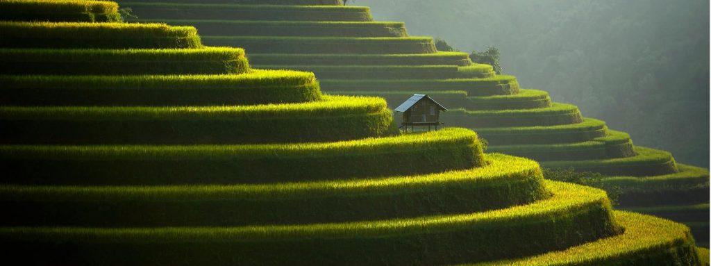 horizon-vietnam-travel photo