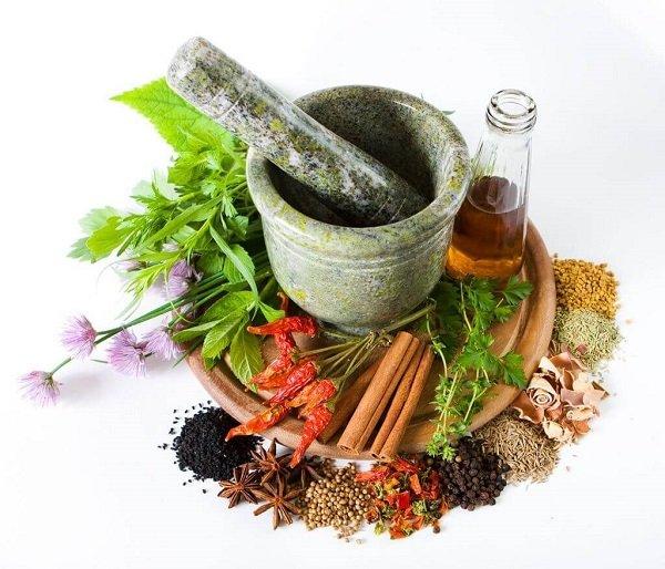 thuoc nam medecine traditionnelle vietnamienne