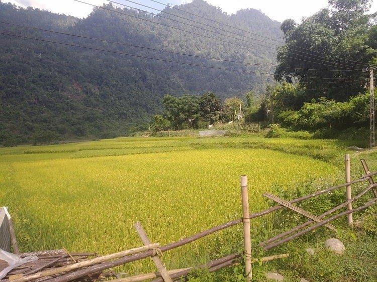 voyage responsable horizon vietnam travel 2020 (2)