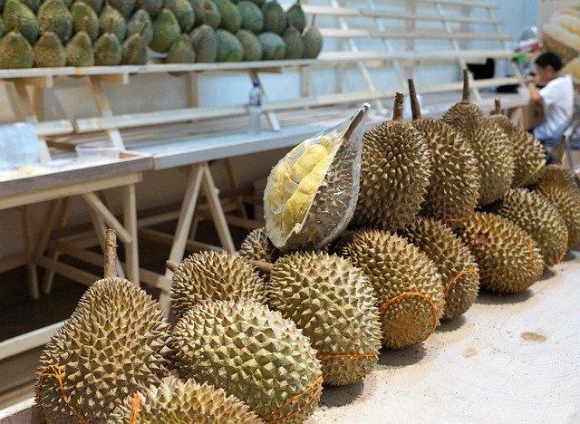 Durian-vietnam